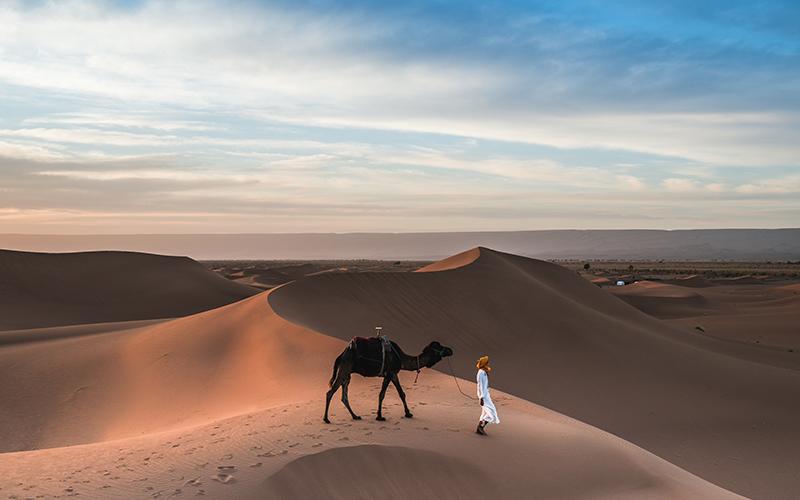 Arabian Desert- The one where I fell off a camel